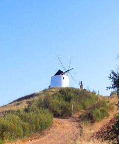kuppe mit windmühle