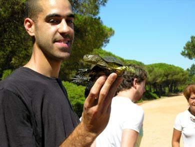 Sumpfschildkroete Algarve