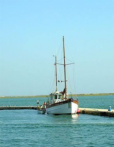 Bott im Algarve Hafen