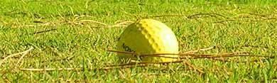 spem-golf