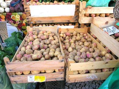 Kartoffel-Algarve-Portugal