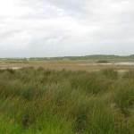 Lagoa Salgados