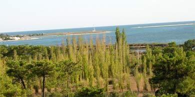 Tavira Meer