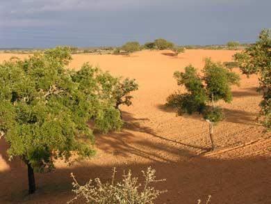 terra deserta algarve