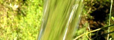 fluesse in der algarve
