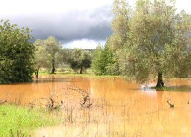 regen in der algarve wetter 2011
