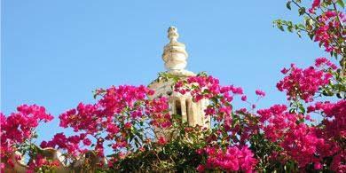 Welche Kurse bietet die USIA der Algarve