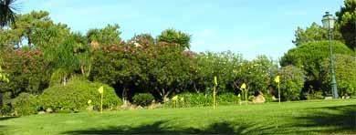 golf-west-algarve