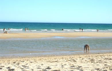 praia armona algarve olhao