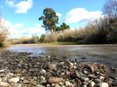 Fluss im Algarve
