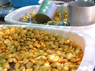tremocos auf dem markt loule