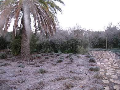 frost-algarve