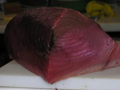 Thunfisch Tavira