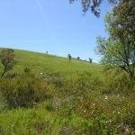 Geopark Algarve