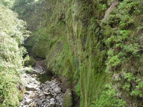 Madeira - die grüne Insel